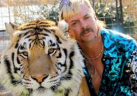 Tiger-king