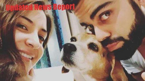 Anushka Sharma and Virat Kohli's favorite Bruno dies