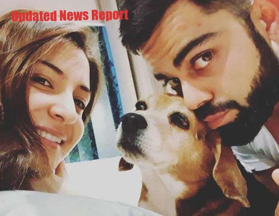Anushka Sharma and Virat Kohli's favorite Bruno dies